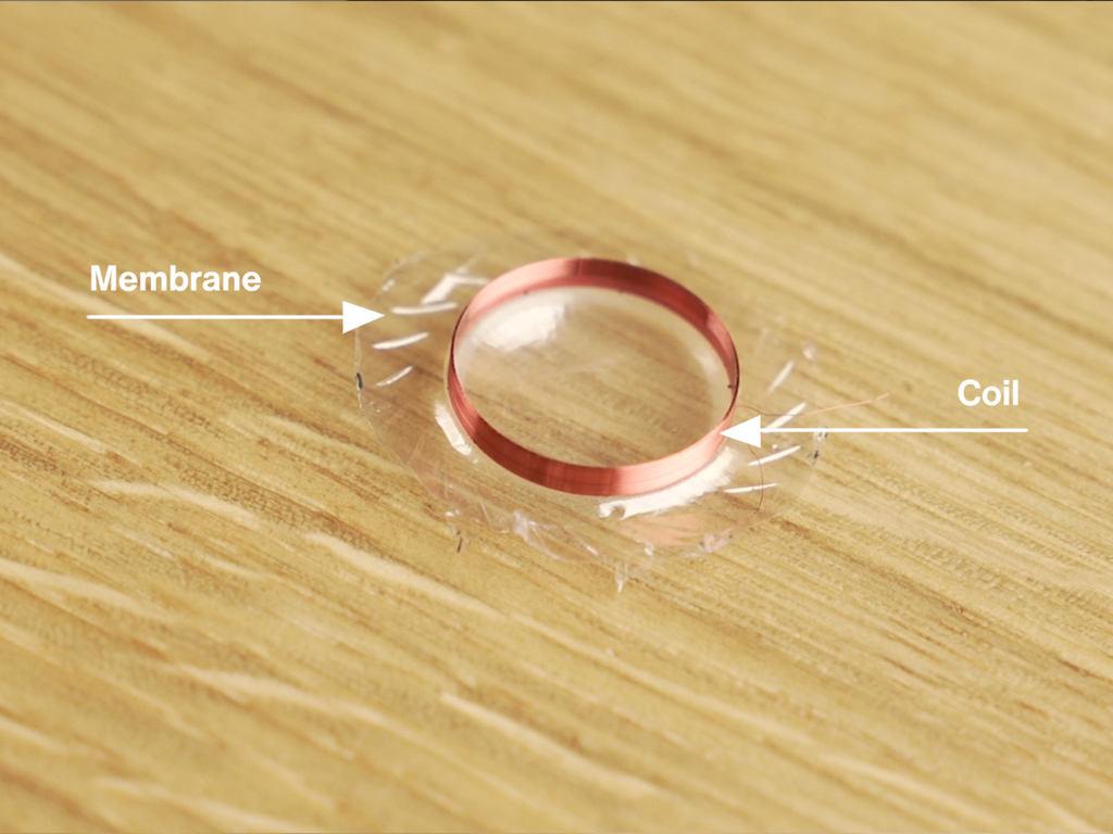 membrane and foil